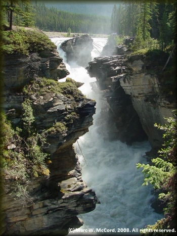 Athabasca Falls on the scenic Athabasca River