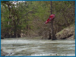 Coleman Canoes and the Upper Guad don't mix well at high water!