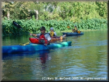 Ken Bickle, Debbie Williams and Julie Gilbert on the San Marcos River