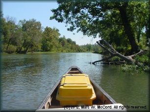 The tranquil Illinois River in summer