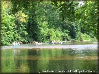 Paddlers enjoy the beautiful scenery along the river