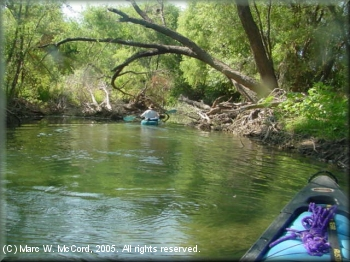 Jungle paddling on the gorgeous Nueces River