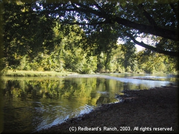 The shady Niangua River in summertime